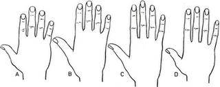 mengetahui karakter dari bentuk tangan